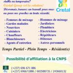 Cristal Group