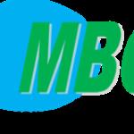 MEDIA BUSINESS CAMEROUN