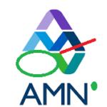 ADVANCED MOBILE NETWORK, (AMN